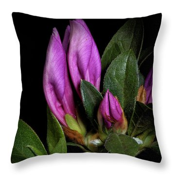 Throw Pillow featuring the photograph Azalea Buds by Richard Rizzo