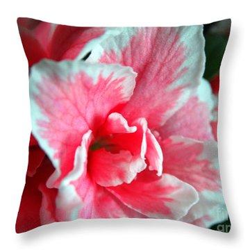 Azalea Close-up Throw Pillow