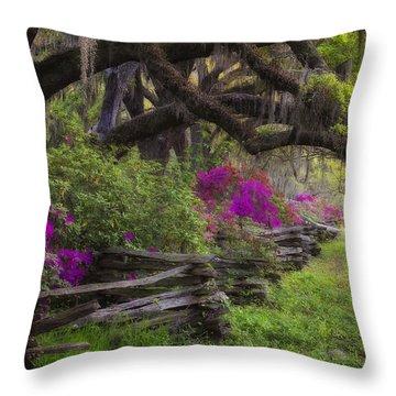 Throw Pillow featuring the photograph Azalea Fence Under Giant Oaks by Ken Barrett