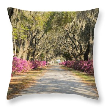 azalea lined road in Spring Throw Pillow