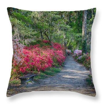 Azalea Path Throw Pillow by Patricia Schaefer