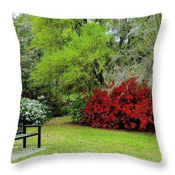 Azalea Time Throw Pillow