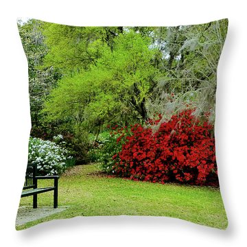 Azalea Time Throw Pillow