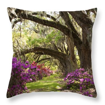 Azaleas And Live Oaks At Magnolia Plantation Gardens Throw Pillow by Dustin K Ryan