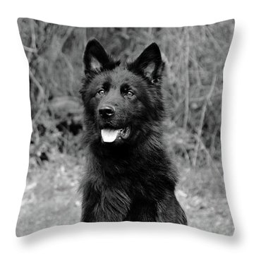 Throw Pillow featuring the photograph Aziza  by Sandy Keeton