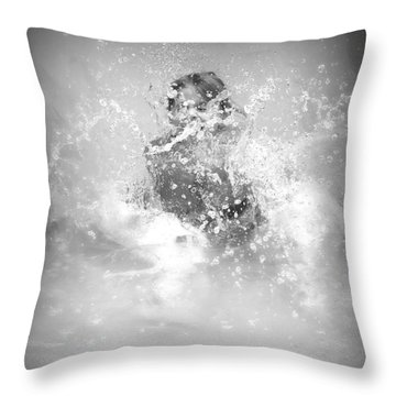 Azlinn Splash Throw Pillow