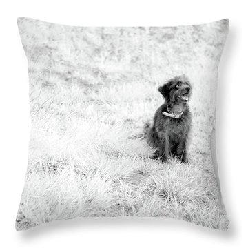 Throw Pillow featuring the photograph Azores In Infrared 1 by Bruno Rosa