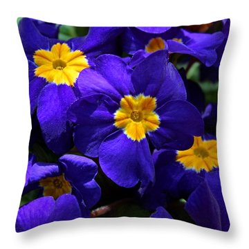 Throw Pillow featuring the photograph Azure Primrose by Michiale Schneider