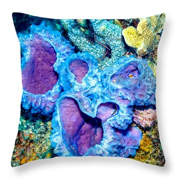 Throw Pillow featuring the photograph Azure Vase Sponges by Perla Copernik