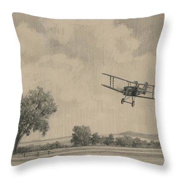 B Flights Back Throw Pillow by Wade Meyers