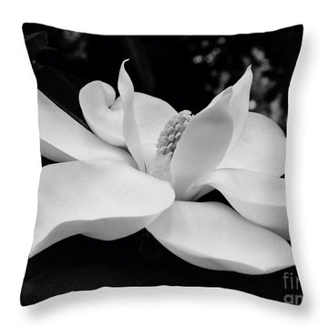 B W Magnolia Blossom Throw Pillow