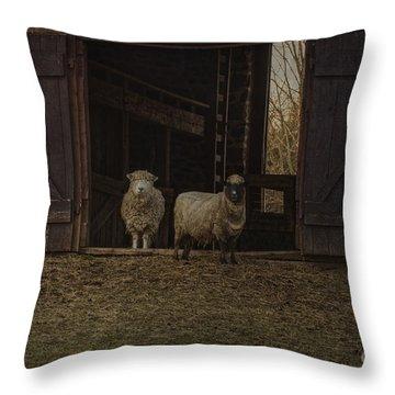 Ba Ram Ewe Throw Pillow