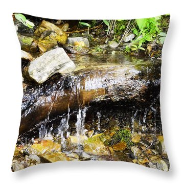 Babbling Brook Throw Pillow by Janie Johnson