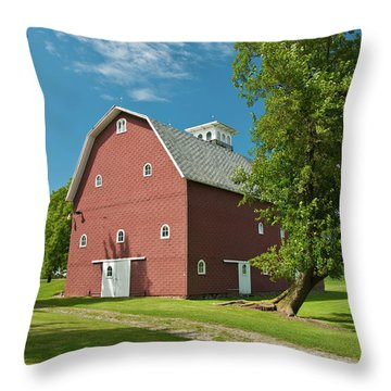 Throw Pillow featuring the photograph Babcock Barn 2259 by Guy Whiteley