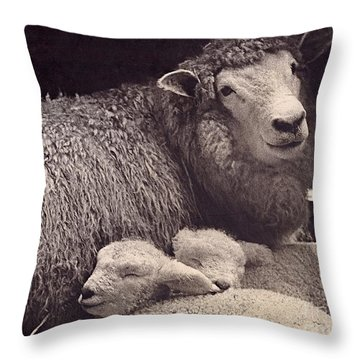Babes In A Manger Throw Pillow