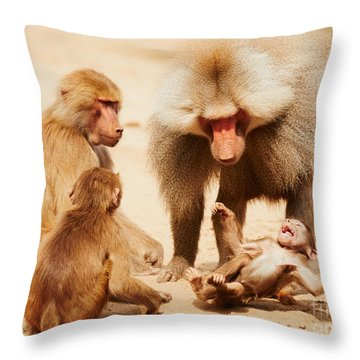 Baboon Family Having Fun In The Desert Throw Pillow by Nick  Biemans