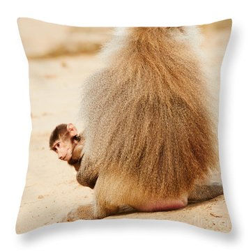 Baboon With A Baby  Throw Pillow by Nick  Biemans