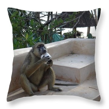 Baboon With A Sweet Tooth Throw Pillow