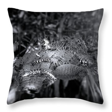 Baby Alligators On Board Throw Pillow by Mark Andrew Thomas