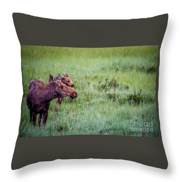 Throw Pillow featuring the photograph Baby And Me by Sandy Molinaro