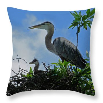 Baby And Mom Great Blue Heron Throw Pillow by Judy Wanamaker