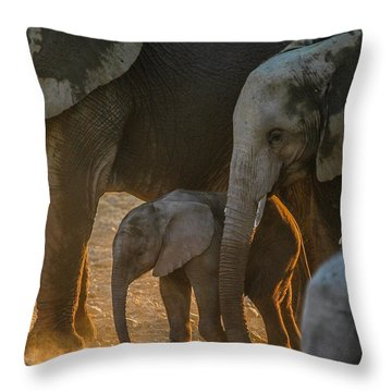 Baby And Siblings Throw Pillow