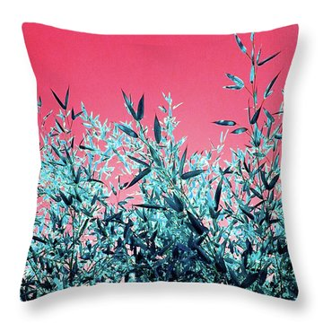 Baby Bamboo - Deep Pink And Blue Throw Pillow