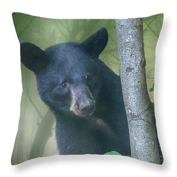 Baby Bear Takes A Peek Throw Pillow