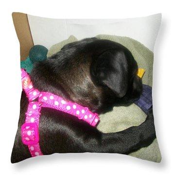 Baby Bella Throw Pillow by Jewel Hengen