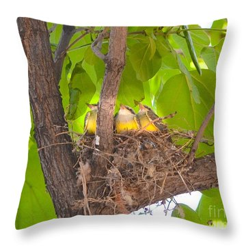 Baby Birds Waiting For Mom Throw Pillow