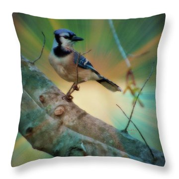 Baby Blue Throw Pillow by Trish Tritz