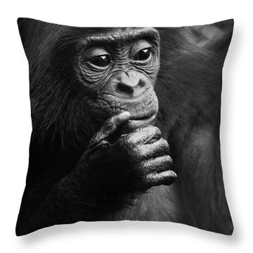 Throw Pillow featuring the photograph Baby Bonobo by Helga Koehrer-Wagner