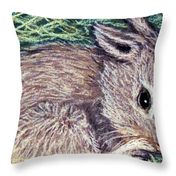 Throw Pillow featuring the pastel Baby Bunny by Jan Amiss