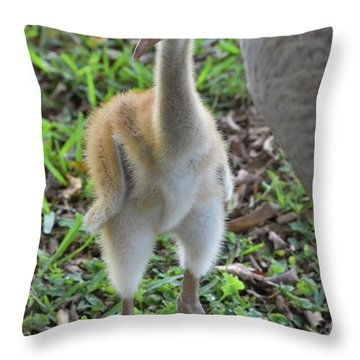 Baby Crane At A Month Old Throw Pillow