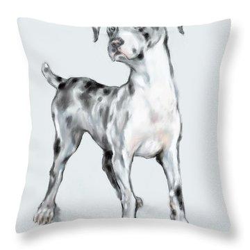 Baby Dane Throw Pillow