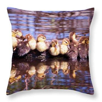 Baby Ducks On A Log Throw Pillow