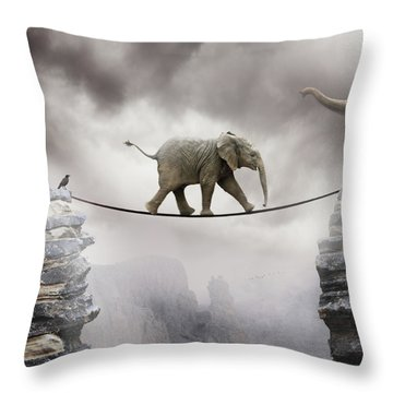 Weather Throw Pillows