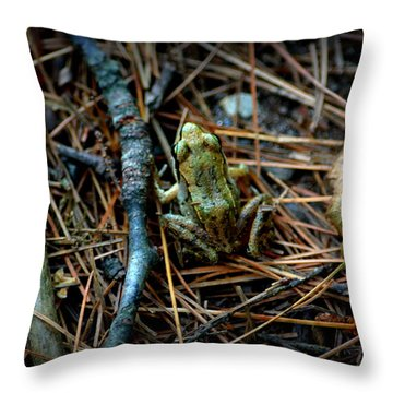 Baby Frog Throw Pillow