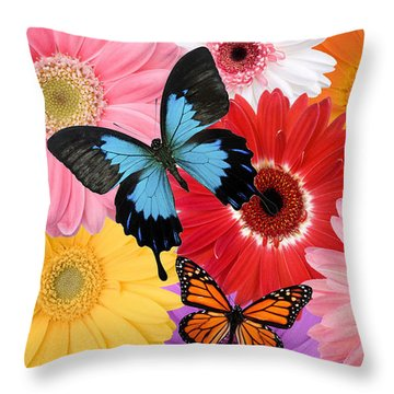 Summer's Desgn Throw Pillow