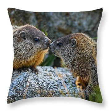 Baby Groundhogs Kissing Throw Pillow