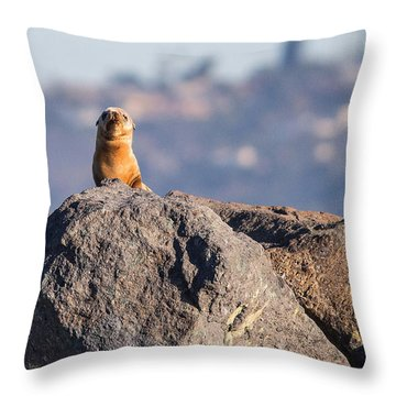 Baby Harbor Seal Throw Pillow