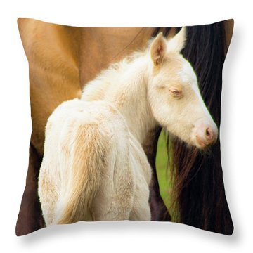 Baby Horse By Mom Throw Pillow