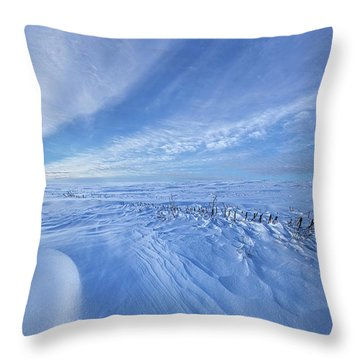 Throw Pillow featuring the photograph Baby It's Cold Outside by Phil Koch