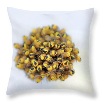 Baby Spiders Throw Pillow