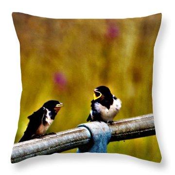 Baby Swallows Throw Pillow