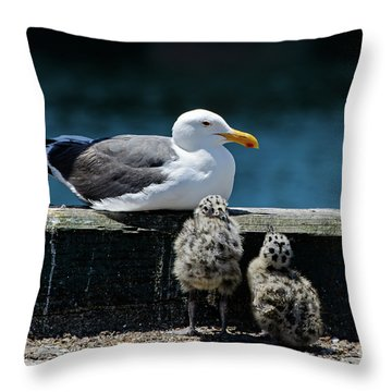 Baby Western Gulls With Mom Throw Pillow