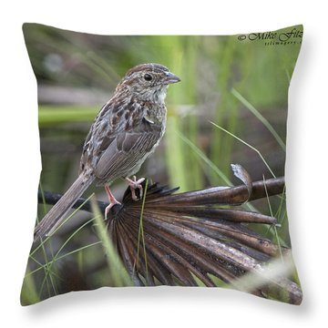 Bachman On A Palm Throw Pillow