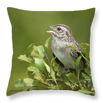 Bachman Sparrow Throw Pillow