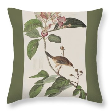 Bachmans Sparrow Throw Pillow by John James Audubon
