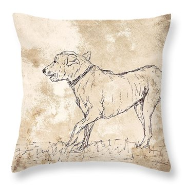 Baci Throw Pillow